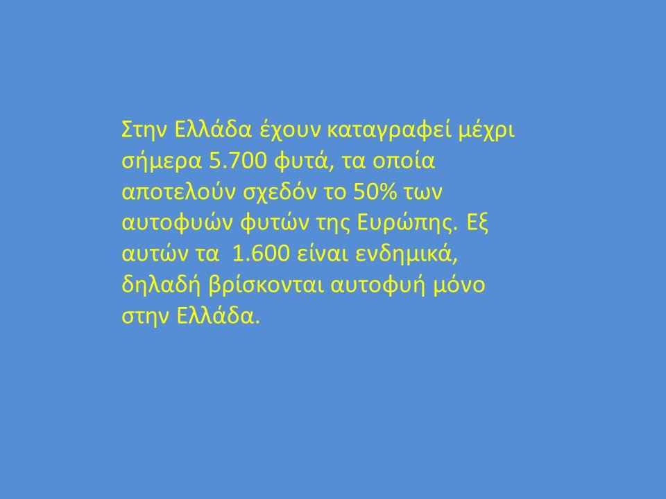 Στην Ελλάδα έχουν καταγραφεί μέχρι σήμερα 5.700 φυτά, τα οποία αποτελούν σχεδόν το 50% των αυτοφυών φυτών της Ευρώπης. Εξ αυτών τα 1.600 είναι ενδημικ