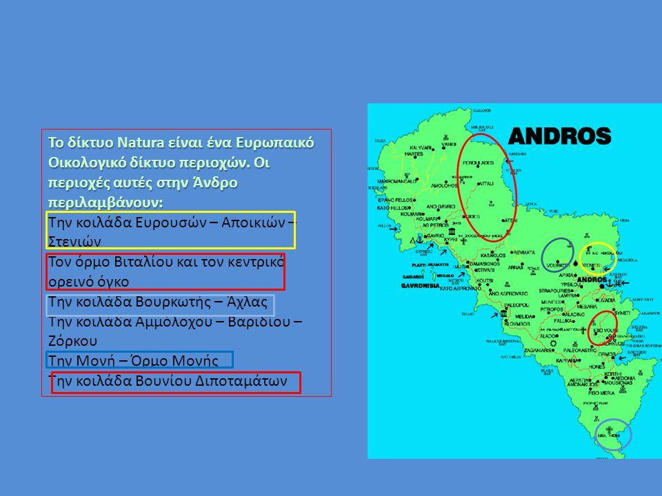 Το δίκτυο Natura είναι ένα Ευρωπαικό Οικολογικό δίκτυο περιοχών. Οι περιοχές αυτές στην Άνδρο περιλαμβάνουν: Την κοιλάδα Ευρουσών – Αποικιών – Στενιών