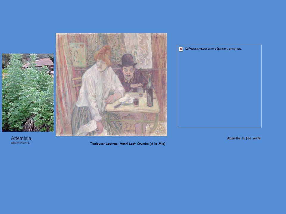 Αrtemisia, absinthium L Absinthe la fee verte Toulouse-Lautrec, Henri Last Crumbs (A la Mie)