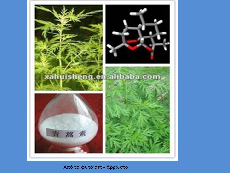 Από το φυτό στον άρρωστο