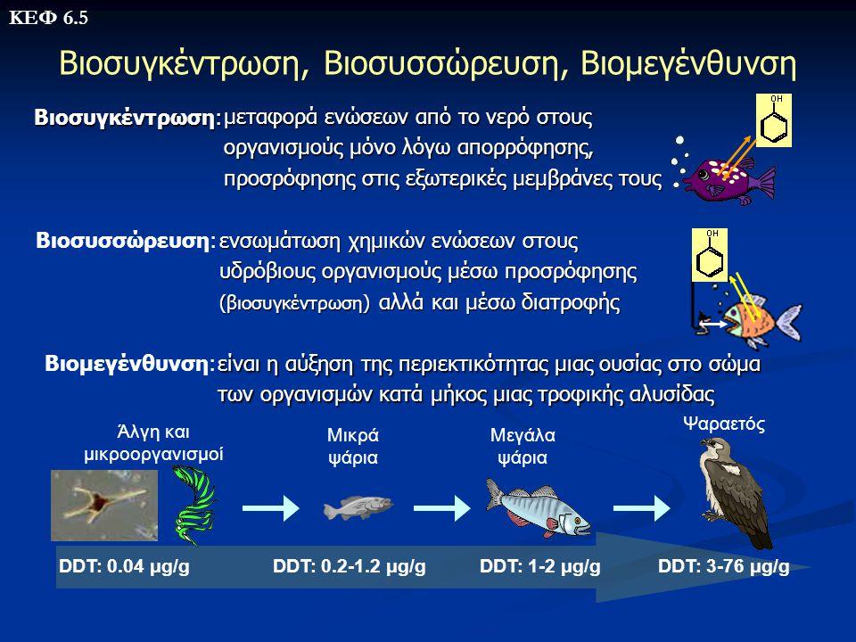 Βιοσυγκέντρωση, Βιοσυσσώρευση, Βιομεγένθυνση Βιοσυσσώρευση: Βιοσυγκέντρωση: Βιομεγένθυνση: Άλγη και μικροοργανισμοί Μικρά ψάρια Μεγάλα ψάρια Ψαραετός
