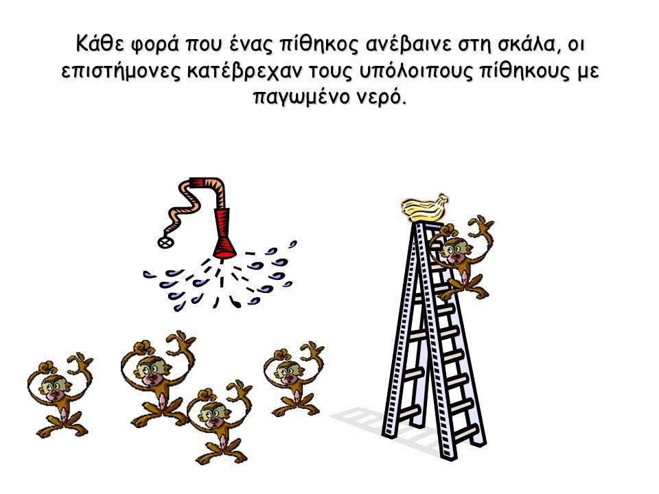 Μία ομάδα επιστημόνων τοποθέτησε 5 πιθήκους σε ένα κλουβί και στη μέση έβαλε μία σκάλα με μερικές μπανάνες στην κορυφή.