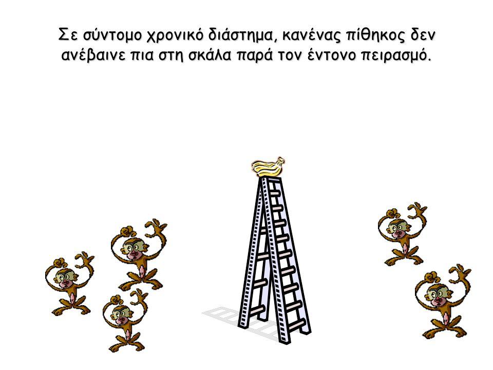 Σε σύντομο χρονικό διάστημα, κανένας πίθηκος δεν ανέβαινε πια στη σκάλα παρά τον έντονο πειρασμό.