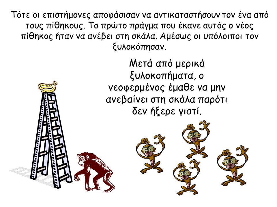 Τότε οι επιστήμονες αποφάσισαν να αντικαταστήσουν τον ένα από τους πίθηκους.