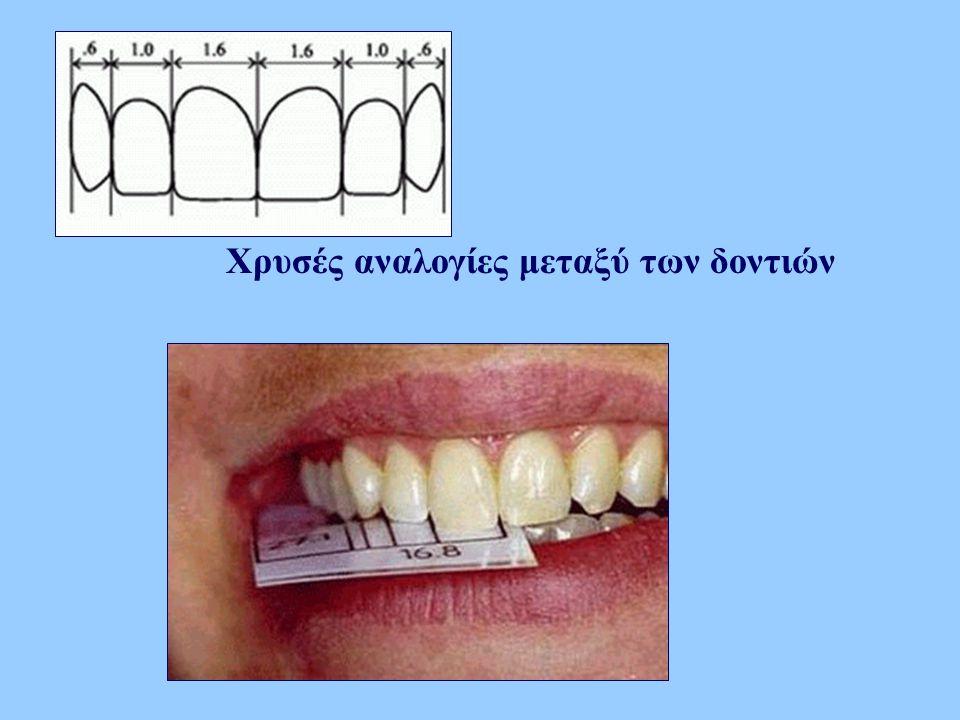 Χρυσές αναλογίες μεταξύ των δοντιών