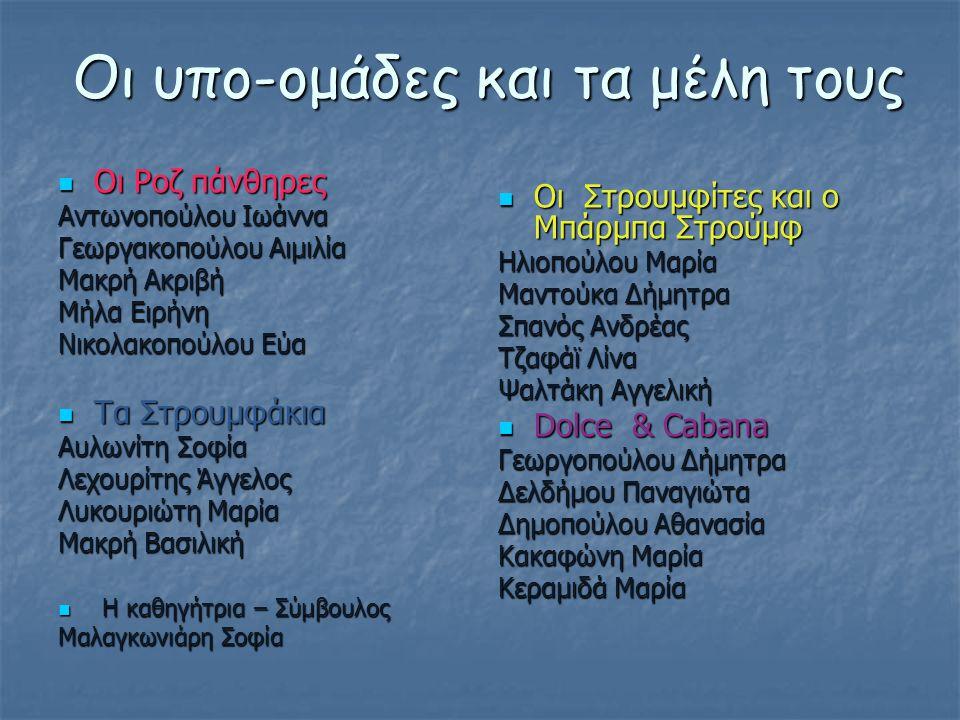 Οι υπο-ομάδες και τα μέλη τους  Οι Ροζ πάνθηρες Αντωνοπούλου Ιωάννα Γεωργακοπούλου Αιμιλία Μακρή Ακριβή Μήλα Ειρήνη Νικολακοπούλου Εύα  Τα Στρουμφάκ