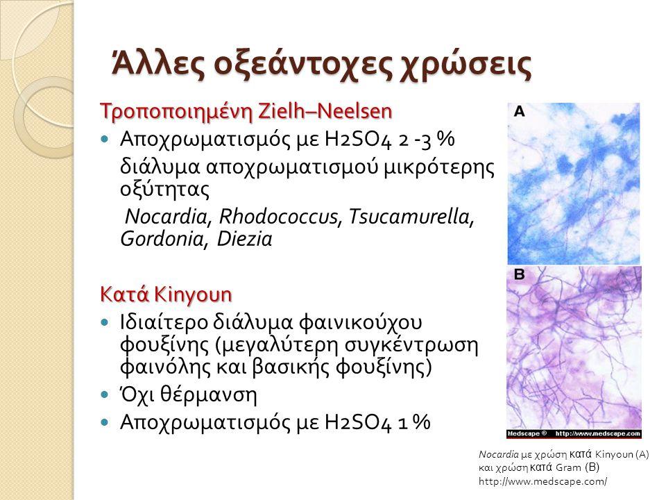 Άλλες οξεάντοχες χρώσεις Τροποποιημένη Zielh–Neelsen  Αποχρωματισμός με Η 2 SO4 2 -3 % διάλυμα αποχρωματισμού μικρότερης οξύτητας Nocardia, Rhodococcus, Tsucamurella, Gordonia, Diezia Κατά Kinyoun  Ιδιαίτερο διάλυμα φαινικούχου φουξίνης ( μεγαλύτερη συγκέντρωση φαινόλης και βασικής φουξίνης )  Όχι θέρμανση  Αποχρωματισμός με Η 2 SO4 1 % Nocardia με χρώση κατά Kinyoun (Α) και χρώση κατά Gram (Β) http://www.medscape.com/