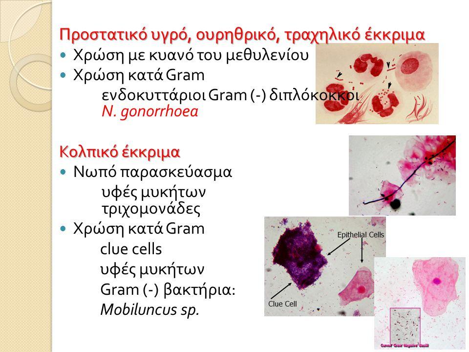 Προστατικό υγρό, ουρηθρικό, τραχηλικό έκκριμα  Χρώση με κυανό του μεθυλενίου  Χρώση κατά Gram ενδοκυττάριοι Gram (-) διπλόκοκκοι N. gonorrhoea Κολπι