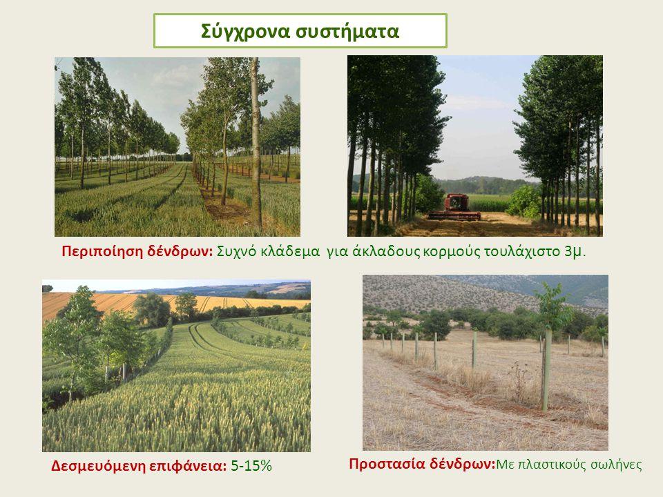 Περιποίηση δένδρων: Συχνό κλάδεμα για άκλαδους κορμούς τουλάχιστο 3 μ. Δεσμευόμενη επιφάνεια: 5-15% Προστασία δένδρων: Με πλαστικούς σωλήνες
