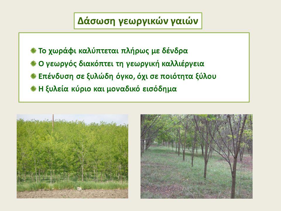 Το χωράφι καλύπτεται πλήρως με δένδρα Ο γεωργός διακόπτει τη γεωργική καλλιέργεια Επένδυση σε ξυλώδη όγκο, όχι σε ποιότητα ξύλου Η ξυλεία κύριο και μο
