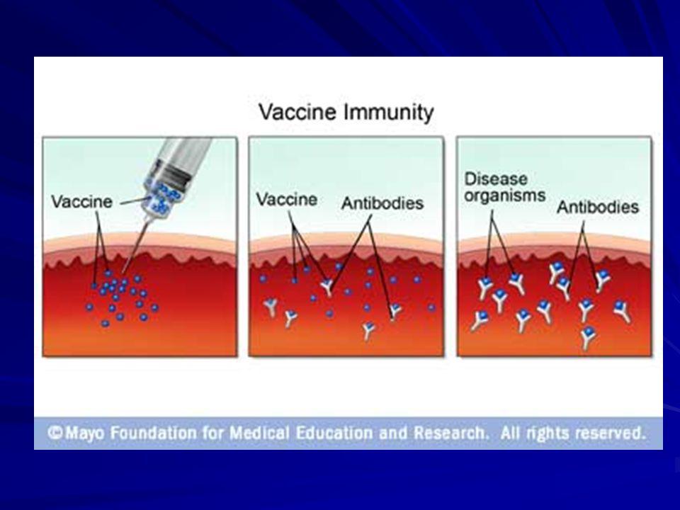 ΕΜΒΟΛΙΑΣΜΟΙ ΠΡΟΩΡΩΝ Ο εμβολιασμός γίνεται κανονικά, βάσει της χρονολογίας γέννησης.