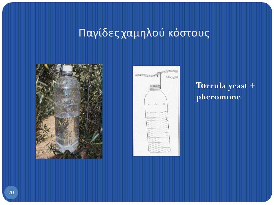 Μαζική παγίδευση Παγίδες δάκου για μαζική παγίδευση 19