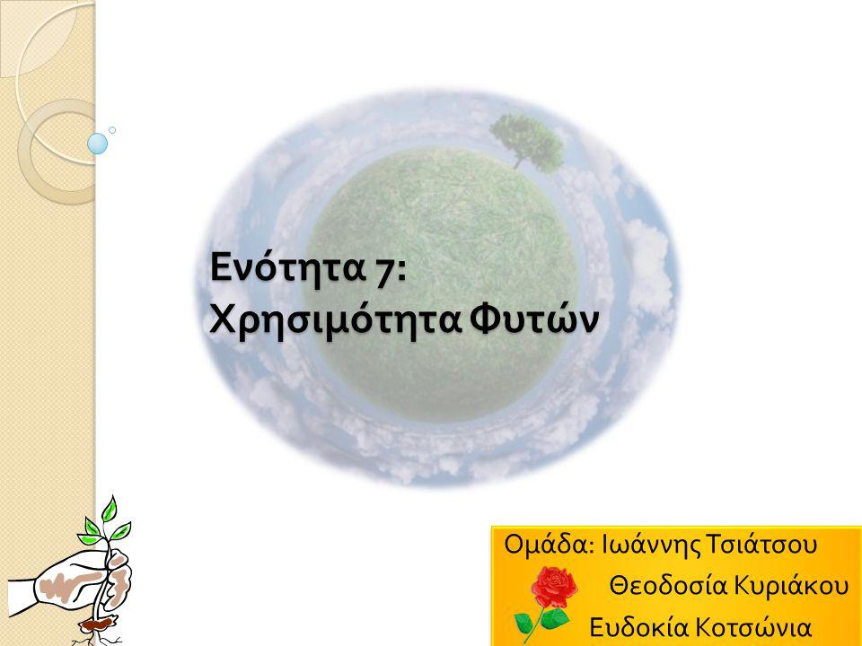 Ενότητα 7: Χρησιμότητα Φυτών Ομάδα : Ιωάννης Τσιάτσου Θεοδοσία Κυριάκου Ευδοκία Κοτσώνια Ομάδα : Ιωάννης Τσιάτσου Θεοδοσία Κυριάκου Ευδοκία Κοτσώνια