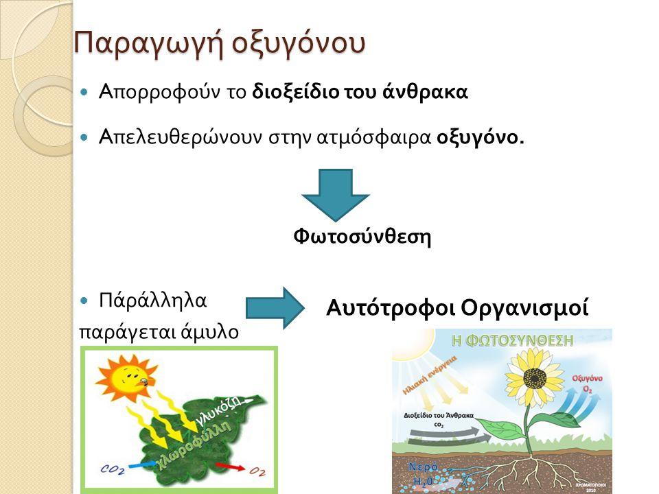 Παραγωγή οξυγόνου  A πορροφούν το διοξείδιο του άνθρακα  A πελευθερώνουν στην ατμόσφαιρα οξυγόνο.