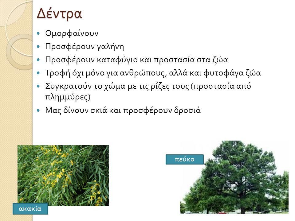 Δέντρα  Ομορφαίνουν  Προσφέρουν γαλήνη  Προσφέρουν καταφύγιο και προστασία στα ζώα  Τροφή όχι μόνο για ανθρώπους, αλλά και φυτοφάγα ζώα  Συγκρατούν το χώμα με τις ρίζες τους ( προστασία από πλημμύρες )  Μας δίνουν σκιά και προσφέρουν δροσιά π εύκο ακακία