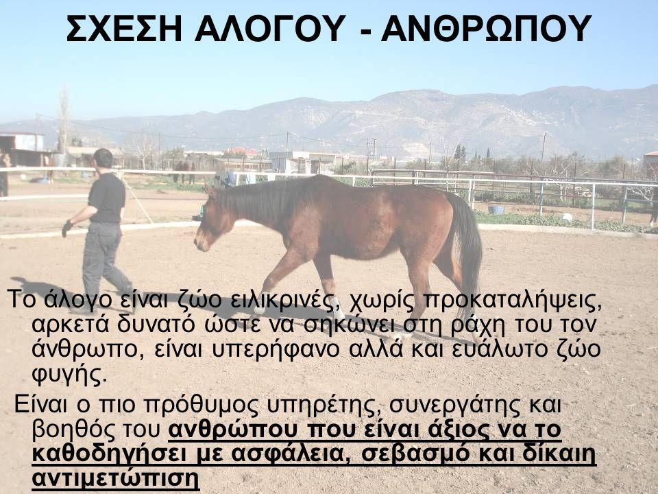 ΕΠΙΚΟΙΝΩΝΙΑ •Το άλογο δρα ως καθρέφτης των εσωτερικών καταστάσεων του ανθρώπου •Το άλογο ανταποκρίνεται άμεσα στην γλώσσα του σώματος του ανθρώπου και