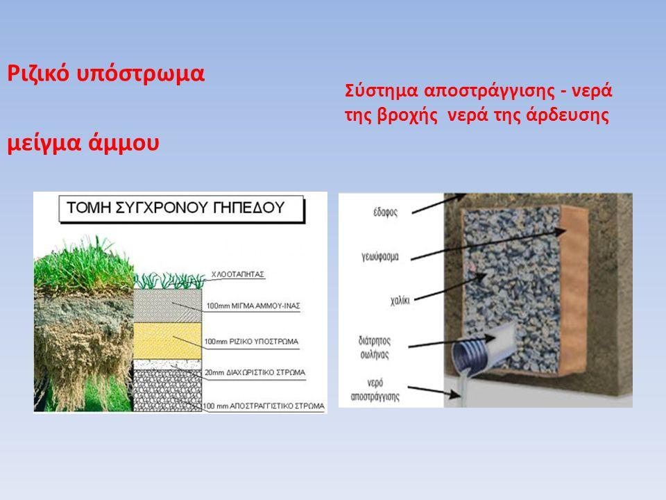 Ριζικό υπόστρωμα μείγμα άμμου Σύστημα αποστράγγισης - νερά της βροχής νερά της άρδευσης