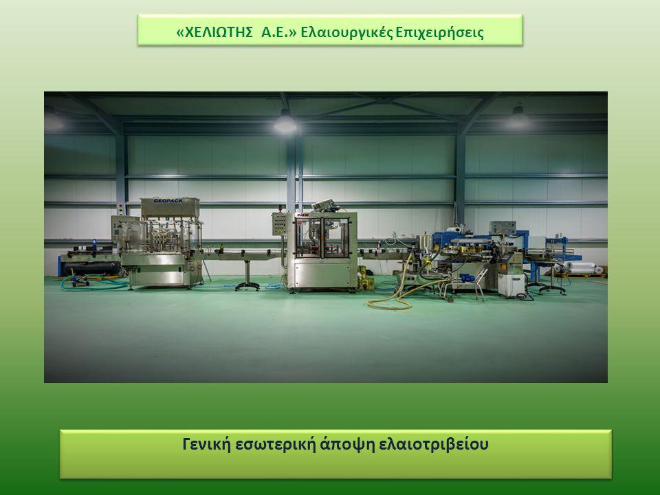 «ΧΕΛΙΩΤΗΣ Α.Ε.» Ελαιουργικές Επιχειρήσεις Β. Παραγωγική Διαδικασία