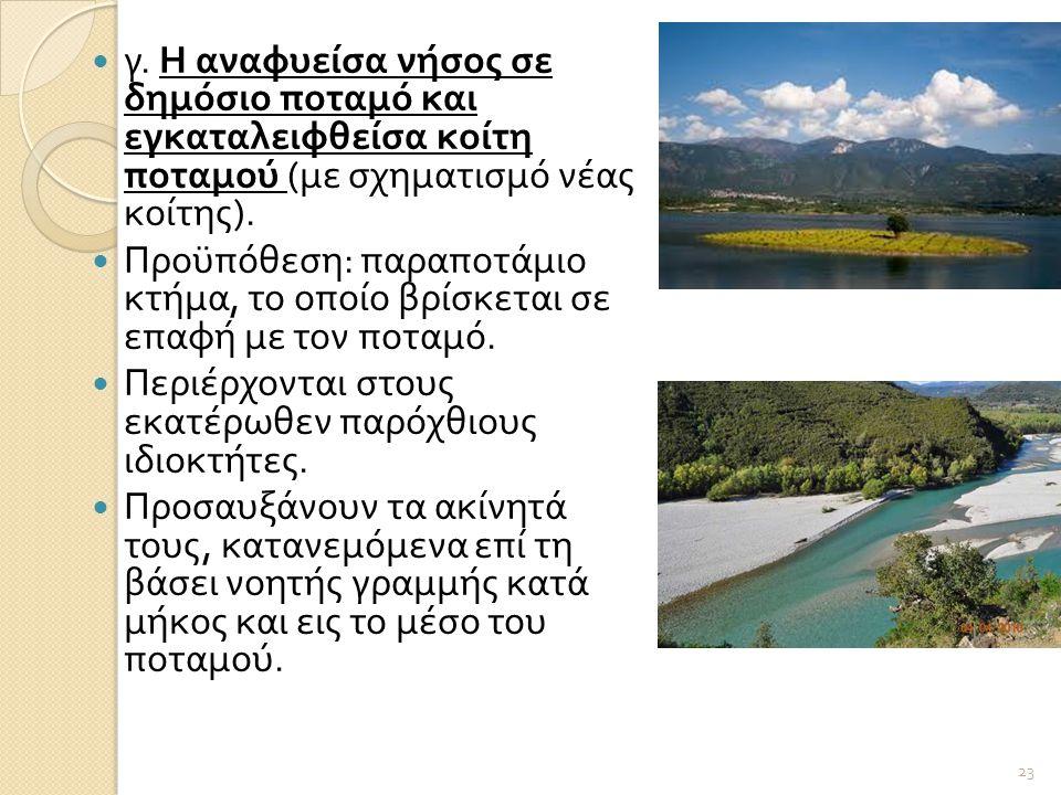  γ. Η αναφυείσα νήσος σε δημόσιο ποταμό και εγκαταλειφθείσα κοίτη ποταμού ( με σχηματισμό νέας κοίτης ).  Προϋπόθεση : παραποτάμιο κτήμα, το οποίο β