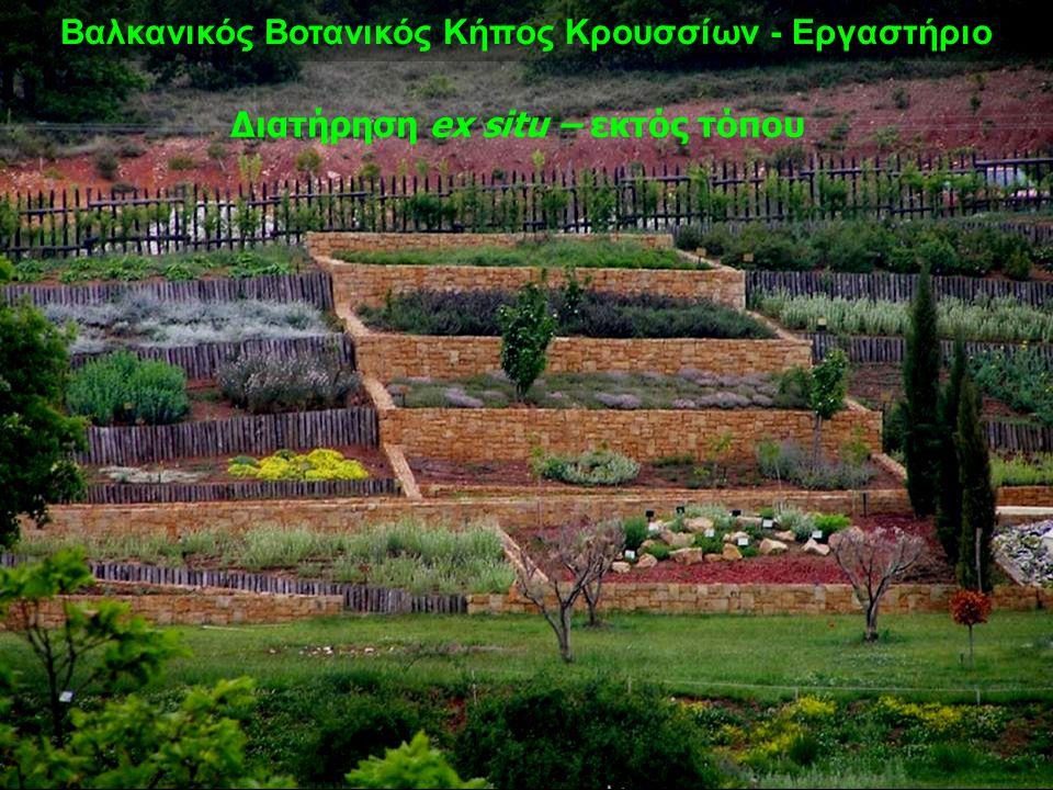 Βαλκανικός Βοτανικός Κήπος Κρουσσίων - Εργαστήριο Διατήρηση ex situ – εκτός τόπου