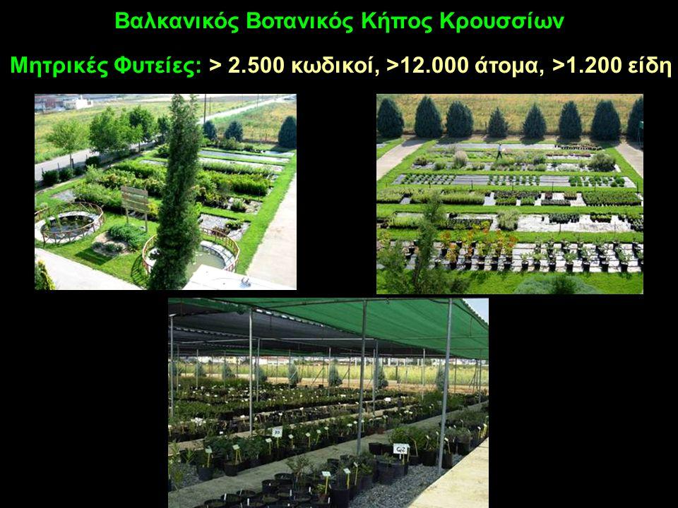 Μητρικές Φυτείες: > 2.500 κωδικοί, >12.000 άτομα, >1.200 είδη Βαλκανικός Βοτανικός Κήπος Κρουσσίων
