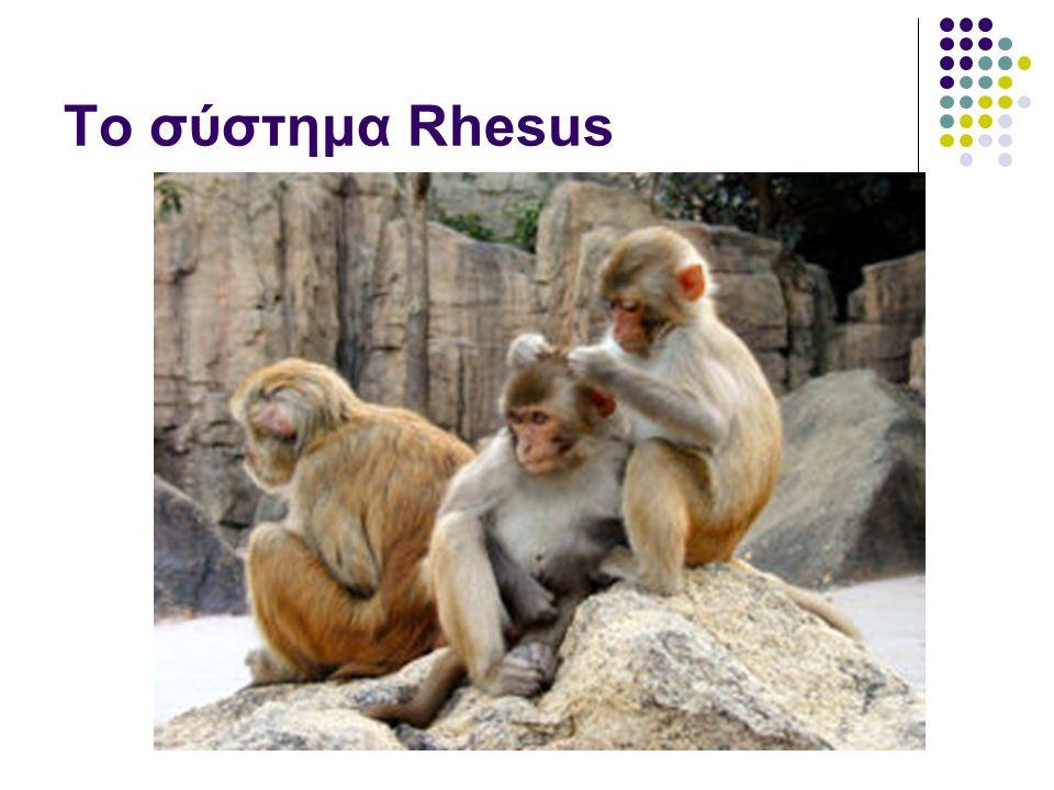 Το σύστημα Rhesus