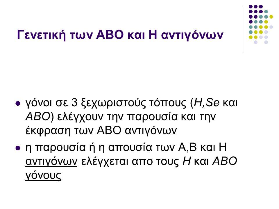 Γενετική των ΑΒO και Η αντιγόνων  γόνοι σε 3 ξεχωριστούς τόπους (Η,Se και ΑΒΟ) ελέγχουν την παρουσία και την έκφραση των ΑΒΟ αντιγόνων  η παρουσία ή η απουσία των Α,Β και Η αντιγόνων ελέγχεται απο τους Η και ΑΒΟ γόνους