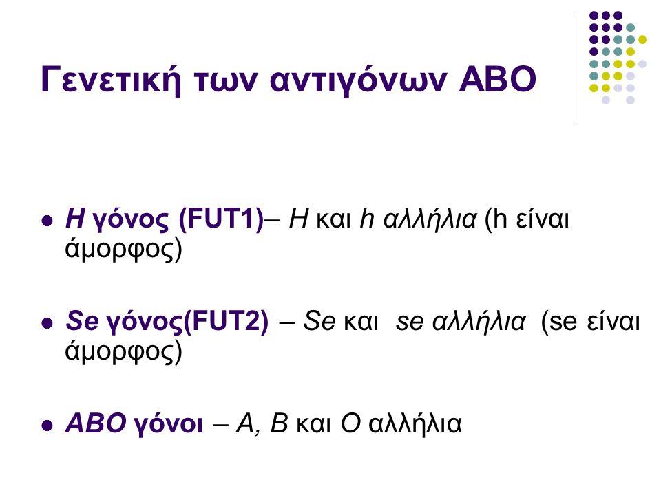 Γενετική των αντιγόνων ΑΒΟ  H γόνος (FUT1)– H και h αλλήλια (h είναι άμορφος)  Se γόνος(FUT2) – Se και se αλλήλια (se είναι άμορφος)  ABO γόνοι – A, B και O αλλήλια