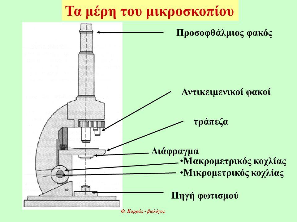 Τα μέρη του μικροσκοπίου Προσοφθάλμιος φακός Αντικειμενικοί φακοί τράπεζα Πηγή φωτισμού •Μακρομετρικός κοχλίας •Μικρομετρικός κοχλίας Διάφραγμα Θ.