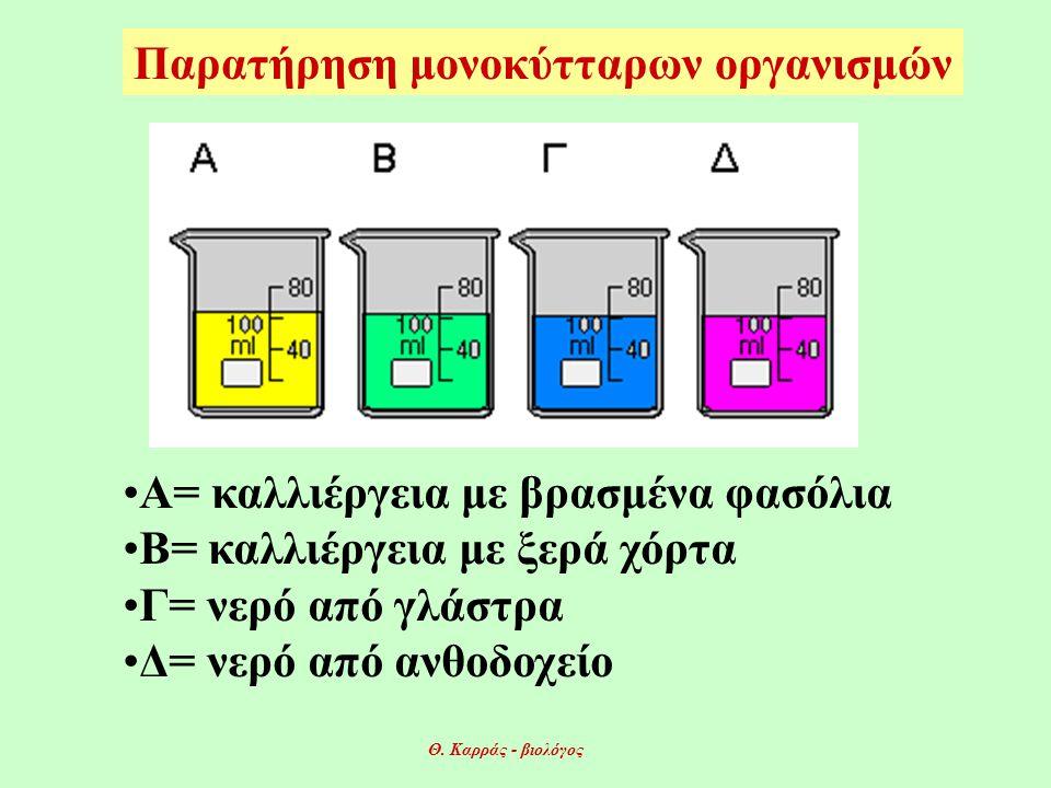 Παρατήρηση μονοκύτταρων οργανισμών •Α= καλλιέργεια με βρασμένα φασόλια •Β= καλλιέργεια με ξερά χόρτα •Γ= νερό από γλάστρα •Δ= νερό από ανθοδοχείο Θ.