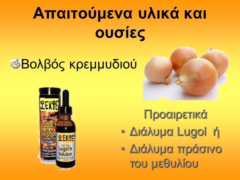Απαιτούμενα υλικά και ουσίες Βολβός κρεμμυδιού Προαιρετικά Προαιρετικά •Διάλυμα Lugol ή •Διάλυμα πράσινο του μεθυλίου