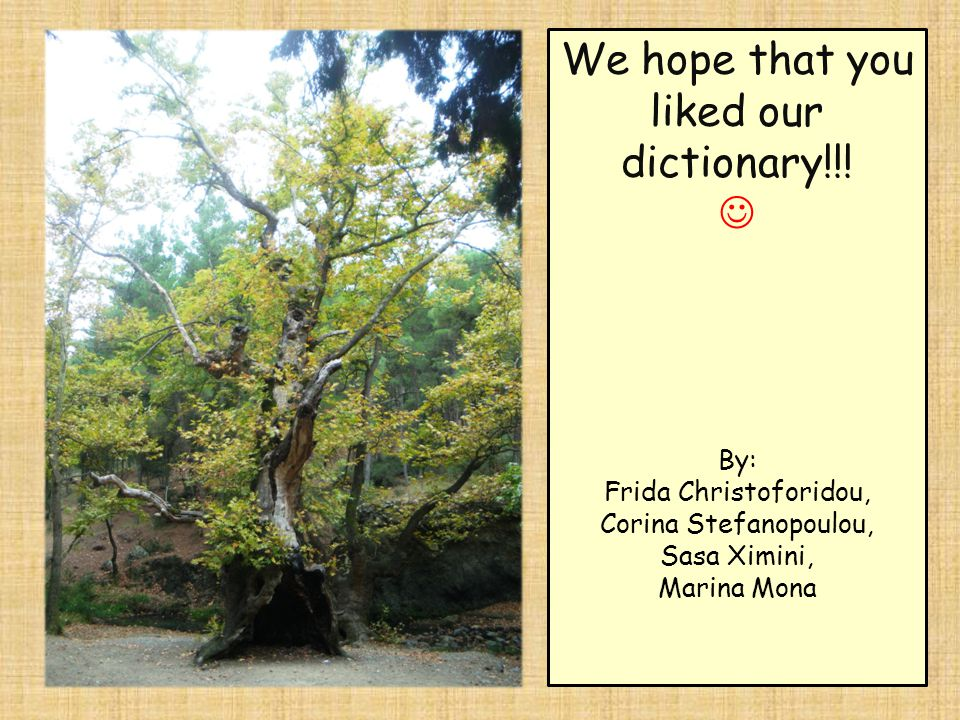 We hope that you liked our dictionary!!.