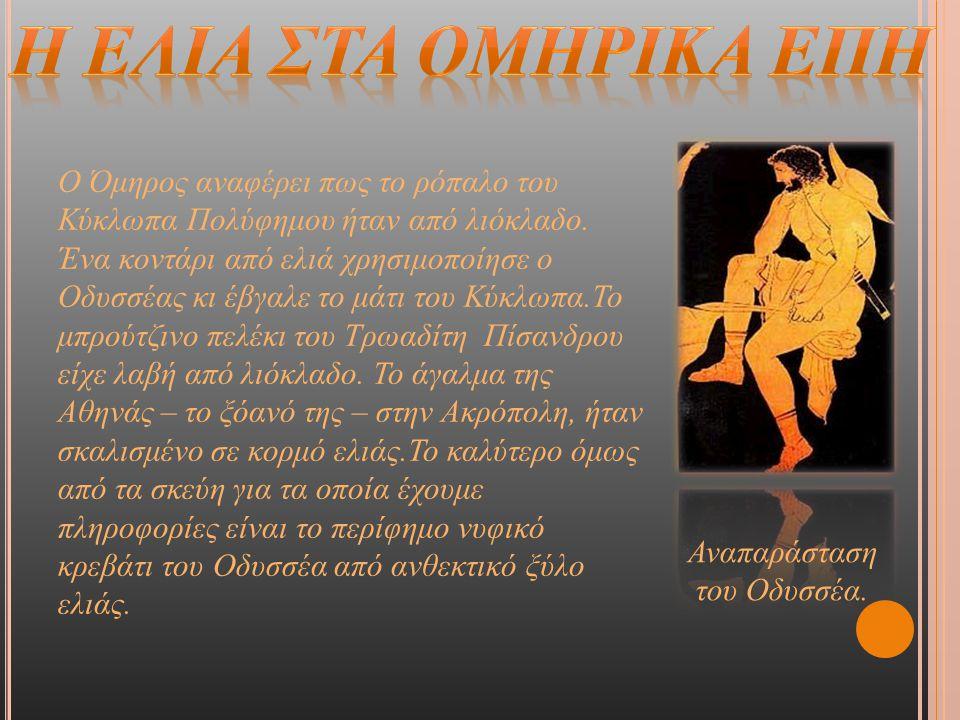 Ο Όμηρος αναφέρει πως το ρόπαλο του Κύκλωπα Πολύφημου ήταν από λιόκλαδο. Ένα κοντάρι από ελιά χρησιμοποίησε ο Οδυσσέας κι έβγαλε το μάτι του Κύκλωπα.Τ