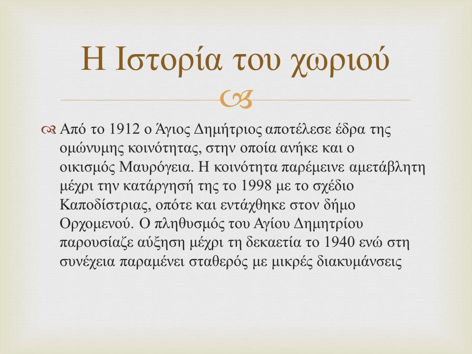   Από το 1912 ο Άγιος Δημήτριος αποτέλεσε έδρα της ομώνυμης κοινότητας, στην οποία ανήκε και ο οικισμός Μαυρόγεια. Η κοινότητα παρέμεινε αμετάβλητη