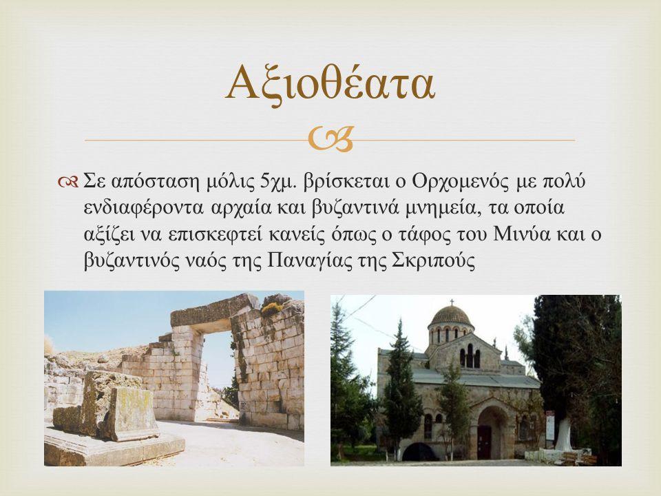   Σε απόσταση μόλις 5 χμ. βρίσκεται ο Ορχομενός με πολύ ενδιαφέροντα αρχαία και βυζαντινά μνημεία, τα οποία αξίζει να επισκεφτεί κανείς όπως ο τάφος
