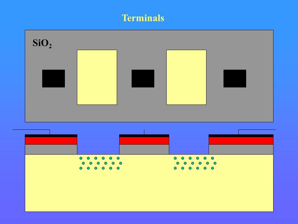 Si Terminals SiO 2