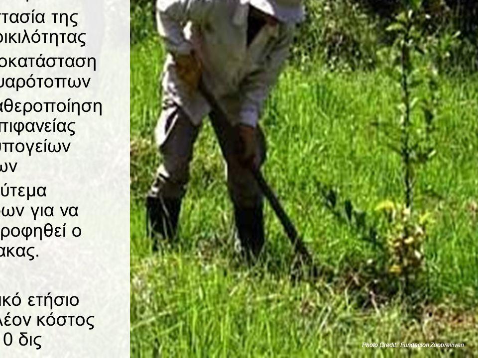 Αποκατάσταση των εδαφών της Γης •Προστασία και αποκατάσταση των δασών •Συντήρηση και «ανακατασκευή» των εδαφών •Προστασία της βιοποικιλότητας •Η αποκα