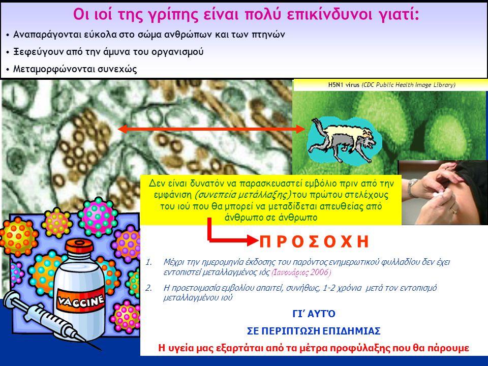 3 Ήπια μορφή • Η Γρίπη μεταδίδεται εύκολα από τα άγρια αποδημητικά στα οικόσιτα πτηνά • Οι πάπιες μεταφέρουν και μεταδίδουν τον ιό χωρίς να αρρωσταίνουν οι ίδιες •Ο ιός μπορεί να προκαλέσει σοβαρή έως θανατηφόρο νόσο στους ανθρώπους Στα ΠΤΗΝΑ η νόσος μπορεί να είναι ήπιας μορφής με ελάχιστα συμπτώματα όπως, ανασηκωμένα φτερά και μείωση της αυγοπαραγωγής.