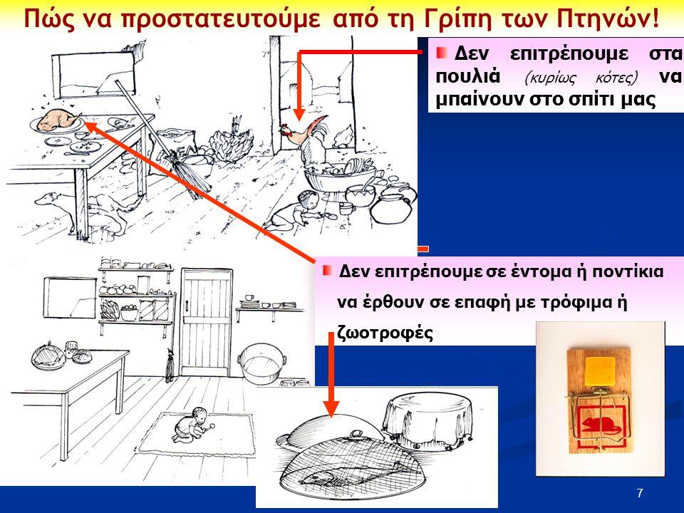 7 Δεν επιτρέπουμε στα πουλιά (κυρίως κότες) να μπαίνουν στο σπίτι μας Πώς να προστατευτούμε από τη Γρίπη των Πτηνών! Δεν επιτρέπουμε σε έντομα ή ποντί