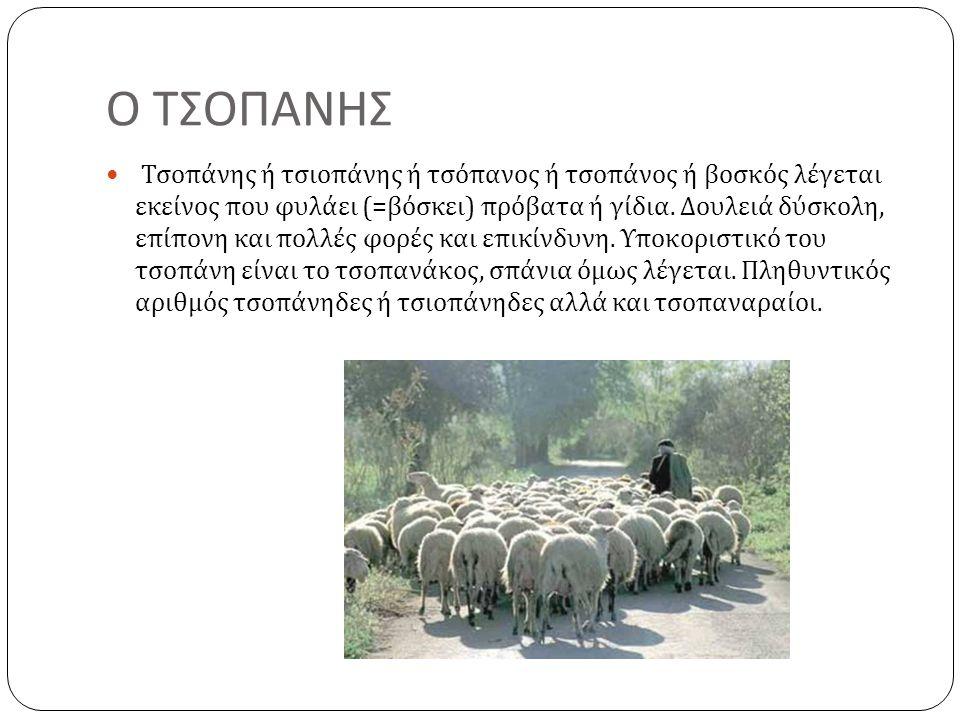 Ο ΤΣΟΠΑΝΗΣ  Τσοπάνης ή τσιοπάνης ή τσόπανος ή τσοπάνος ή βοσκός λέγεται εκείνος που φυλάει (= βόσκει ) πρόβατα ή γίδια. Δουλειά δύσκολη, επίπονη και