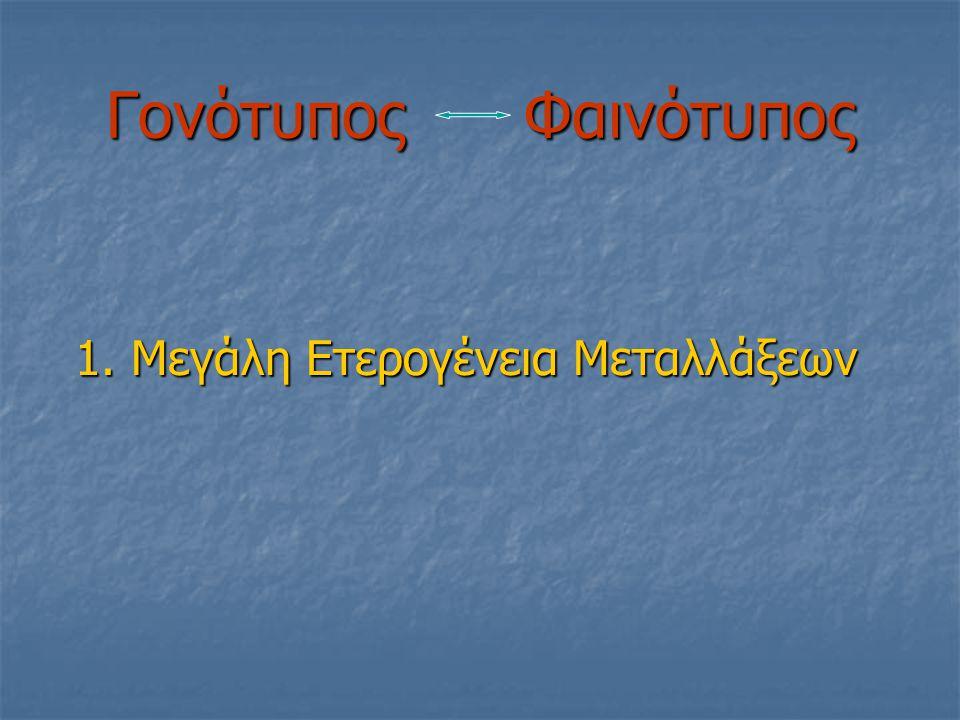 Είδος Μεταλλαγής ΤύποςΑριθμόςΧρωμ/τωνΣυχνότητα(%) IVS I-110(G-->A) β+β+β+β+69142.7 cd 39(C-->T) βοβοβοβο29118.0 IVS I-1(G-->A) βοβοβοβο20412,6 IVS I-6(T-->C) β+β+β+β+1187,3 IVS II-745(C-->G) β+β+β+β+986,1 IVS II-1(G-->A) βοβοβοβο412,5 β-101(C-->T) β+β+β+β+301,9 FSC-6(-A) βοβοβοβο241,5 δβ-Sic βοβοβοβο231,4 β-87(C-->G ) β+β+β+β+191,2 FSC-5(-CT) βοβοβοβο161 FSC-8(-AA) βοβοβοβο110,7 Hb Lepore β+β+β+β+90,6 IVS I-5(G-->A) βοβοβοβο80,5 IVS I-116(T-->G) β+β+β+β+40,2 Hb Knossos β+β+β+β+30,2 Β-Thalassemia mutations in Hellas