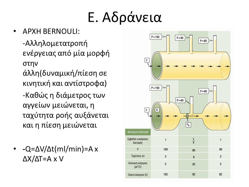 Ε. Αδράνεια • ΑΡΧΗ ΒΕRNOULI: -Αλληλομετατροπή ενέργειας από μία μορφή στην άλλη(δυναμική/πίεση σε κινητική και αντίστροφα) -Καθώς η διάμετρος των αγγε