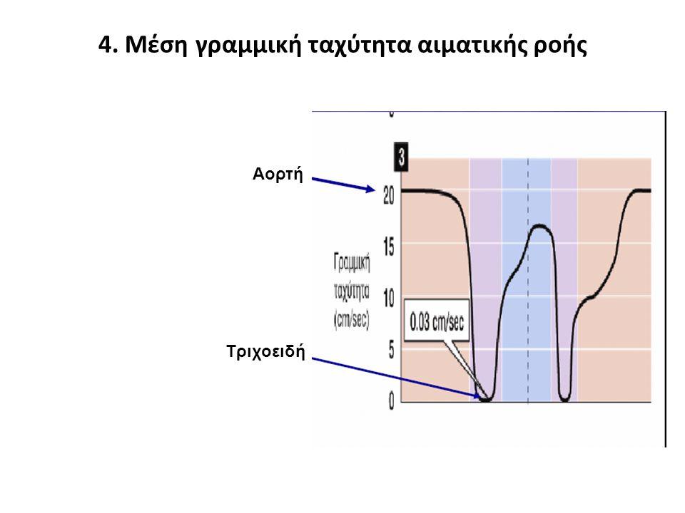 4. Μέση γραμμική ταχύτητα αιματικής ροής Αορτή Τριχοειδή