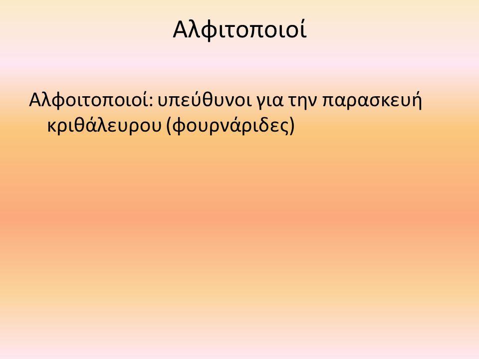Αλφιτοποιοί Αλφοιτοποιοί: υπεύθυνοι για την παρασκευή κριθάλευρου (φουρνάριδες)
