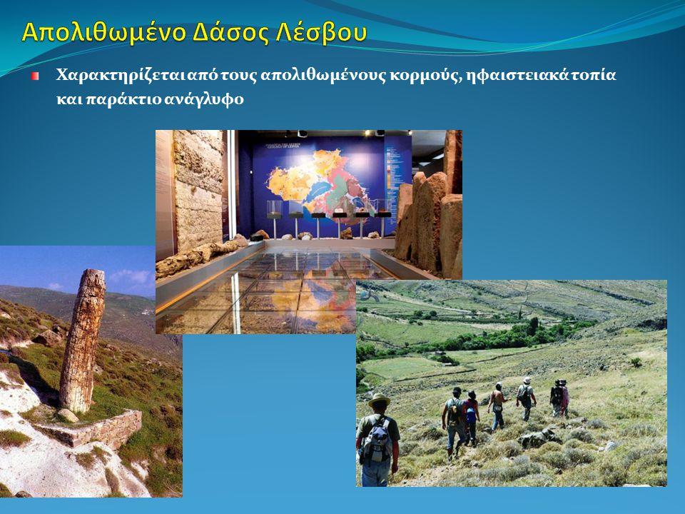 Απολιθωμένο Δάσος Λέσβου Ψηλορείτης (2001) Χελμός- Βουραϊκός (2009) Βίκος-Αώος (2010)