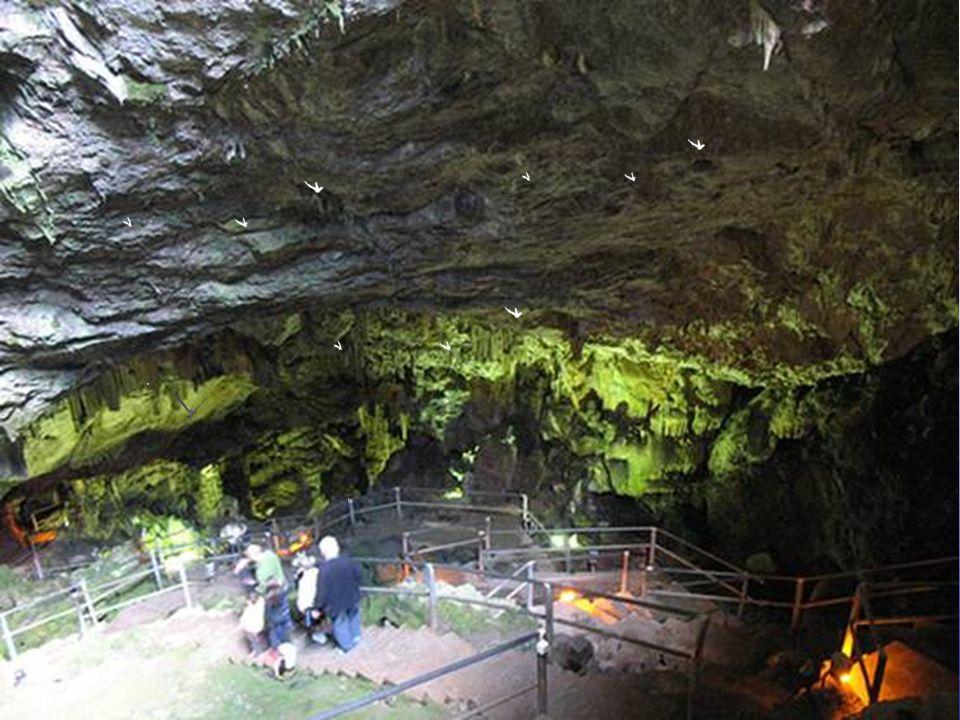 The birth place of Jupiter Δικταίο άντρο, το σπήλαιο γέννησης του Δία