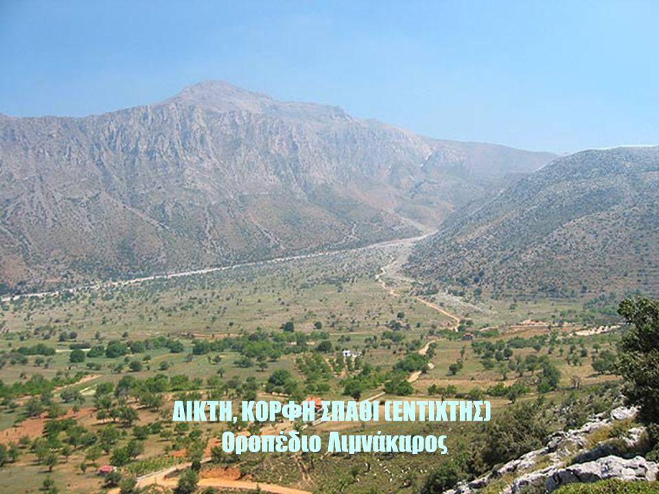 Η Δίκτη κατά τα χρόνια της κατοχής της Κρήτης από τους Ενετούς, Τούρκους κλπ είχε γίνει καταφύγιο και ορμητήριο εξεγέρσεων. Εκεί είχαν το κεντρικό αρχ