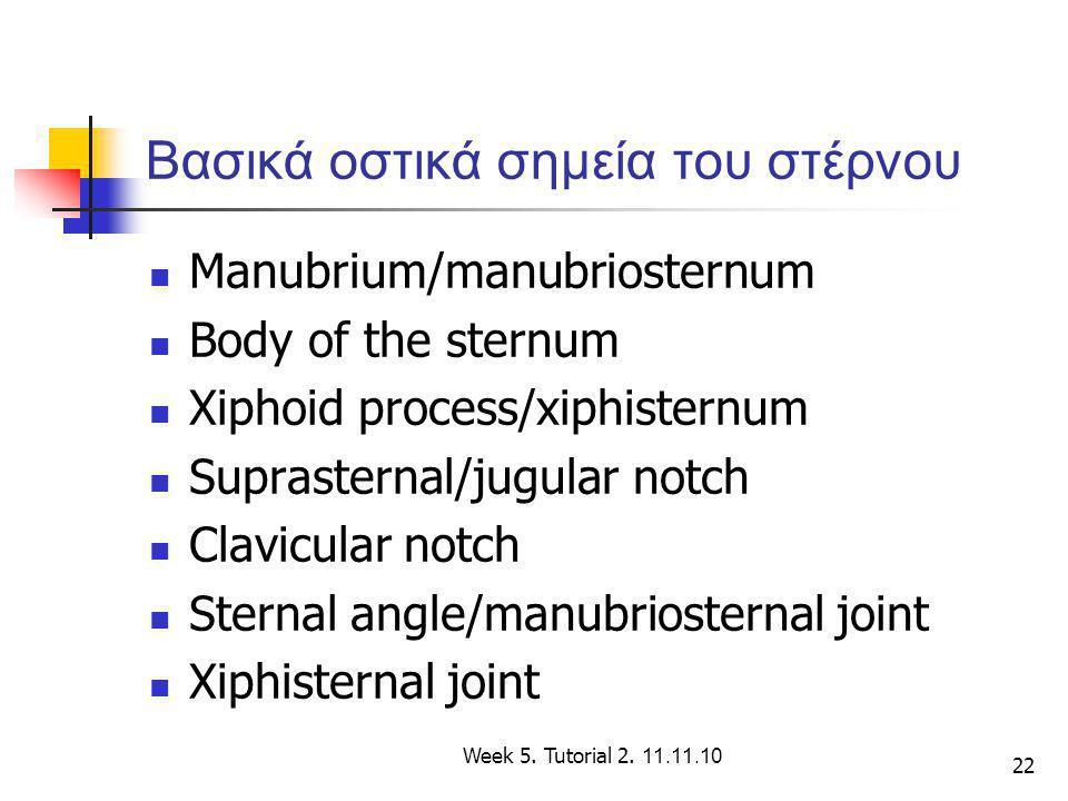 22 Βασικά οστικά σημεία του στέρνου Manubrium/manubriosternum Body of the sternum Xiphoid process/xiphisternum Suprasternal/jugular notch Clavicular n