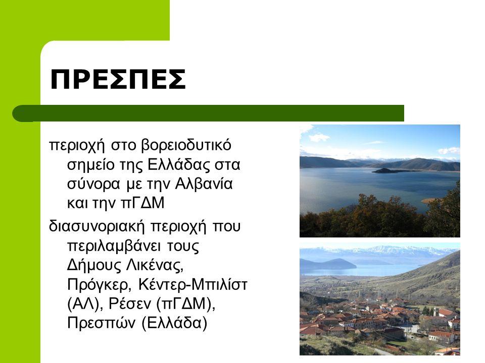 ΠΡΕΣΠΕΣ περιοχή στο βορειοδυτικό σημείο της Ελλάδας στα σύνορα με την Αλβανία και την πΓΔΜ διασυνοριακή περιοχή που περιλαμβάνει τους Δήμους Λικένας, Πρόγκερ, Κέντερ-Μπιλίστ (ΑΛ), Ρέσεν (πΓΔΜ), Πρεσπών (Ελλάδα)