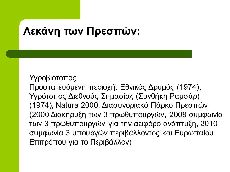 Λεκάνη των Πρεσπών: Υγροβιότοπος Προστατευόμενη περιοχή: Εθνικός Δρυμός (1974), Υγρότοπος Διεθνούς Σημασίας (Συνθήκη Ραμσάρ) (1974), Natura 2000, Διασυνοριακό Πάρκο Πρεσπών (2000 Διακήρυξη των 3 πρωθυπουργών, 2009 συμφωνία των 3 πρωθυπουργών για την αειφόρο ανάπτυξη, 2010 συμφωνία 3 υπουργών περιβάλλοντος και Ευρωπαίου Επιτρόπου για το Περιβάλλον)